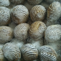 Лакомка (Творожное) 2,5кг Капитулова печенье